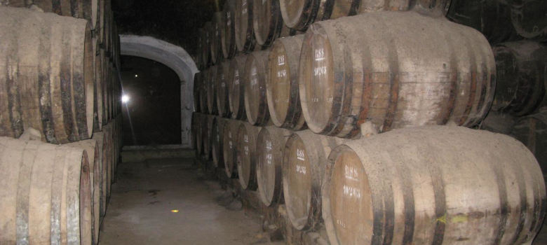 Arrabida Wine Tour from Lisbon (2)
