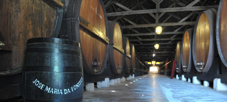 Arrabida Wine Tour from Lisbon (7)